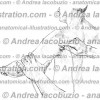 051- Muscolo Deltoide – Deltoid Muscle – Musculus Deltoideus